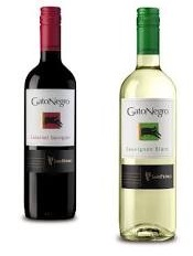Bottle of Wine (red or white)